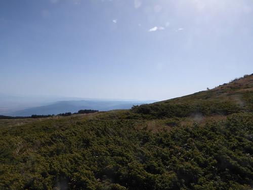 Mount Vitosha (4)