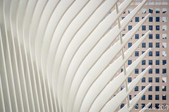 Oculus-00288 (Claude Tomaro) Tags: nyc oculus lines claude tomaro sony alpha a77ii abstract architecture
