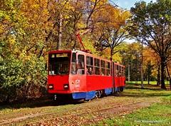 Line 3, Belgrade (Mladja_IC431) Tags: tram 3 topcider belgrade beograd autumn jesen priroda nature serbia