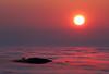 Fog Island (Omnitrigger) Tags: clouds fog pink coastline west california norcal