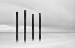 Brighton Pillars (jaume vaello) Tags: nikon nikond7200 kenko kenkond400 leefilters leend09 wb blancoynegro blackcard brighton inglaterra longexposure largaexposición pilares pillars mar manfroto jaumevaello