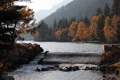 autumn in twin lakes, california (The Intrepid Traveler) Tags: californiaautumn fallcolors autumn2017 fall2017 monocounty inyocounty bishop stanislausforest easternsierras leafpeeping canon5dmkii sooc changingcolors deciuoustrees aspentrees aspens yosemite yosemitevalley lakes twinlakes sunset creek