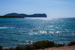 capo Caccia (renmas57) Tags: alghero sardegna portoferro capo caccia promontorio costa landscape panorama mare sea sun