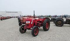 David Brown Cropmaster (samestorici) Tags: trattoredepoca oldtimertraktor tractorfarmvintage tracteurantique trattoristorici oldtractor veicolostorico