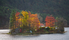 Hausdal (2000stargazer) Tags: hausdal bergen norway landscape nature autumn fall autumncolours lake reflections october canon trees forest