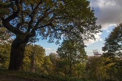 Schröders Elbpark (Elbmaedchen) Tags: park schröderselbpark hamburg eichen hamburgerhafen hafen containerbrücken elbe abhang hill oak bäume trees nienstedten