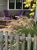 Welcome Home (32nd and Pine) Tags: chelan lookout porch adirondack chair seagrass grass leaves house yard fence wood