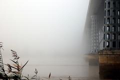 Sorti du brouillard (Nadia (no awards please !)) Tags: pont bridge brouillard fog mist brume eiffel