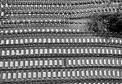 urban oasis (heinzkren) Tags: schwarzweis blackandwhite monochrome ricoh cart trolley shopping caddy buggy einkaufswagen scs ikea parkplatz park parking muster pattern