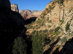 Zion NP_098 (Thomas Jundt + CV) Tags: eastmesatrail nationalpark usa utah zionnp