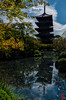 The Glassy Pond (snakecats) Tags: 京都市 京都府 日本 jp 東寺 toji 神社仏閣 仏閣 寺 京都 kyoto buddhisttemple temple 五重塔 fivestoreypagoda pond 池 glassy 鏡面 鏡 mirror