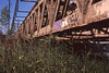 Steel River (Magnus Bergström) Tags: canon ae1 expired 135 film 35mm analog fuji provia 100f fujiprovia100f fujichromeprovia100frdpiii fujichrome sverige sweden karlstad värmland bridge steel reed train grass graffiti