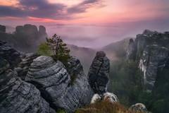 Bastei Sunrise II (Alexander Lauterbach Photography) Tags: bastei saxonswitzerland saxon sunrise sonnenaufgang sächsischeschweiz dresden sachsen deutschland germany landscape fog nebel sony a7r
