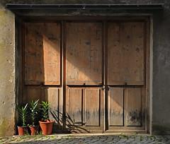 pollice verde (Rino Alessandrini) Tags: vasi pianta porta ombra geometria quadrato diagonale legno portone natura chiuso vases plant shade geometry square diagonal wood door closed nature
