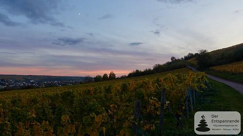 Sonnenuntergang in den Weinbergen über Nierstein