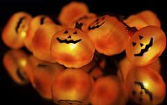 Happy Halloween!! (WilliamND4) Tags: halloween nikon d810 tokina100mmf28atxprod pumpkins reflection flickrfriday orangedecorations