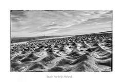 North Sea (Kyriakos11) Tags: sea meer northsea nordsee nordwijk monochrom niederlande beach holland bw noiretblanc schwarzweis blackwhite