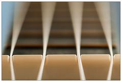 Ukulele (EddieAC) Tags: macromondays memberschoicemusicalinstruments ukulele string