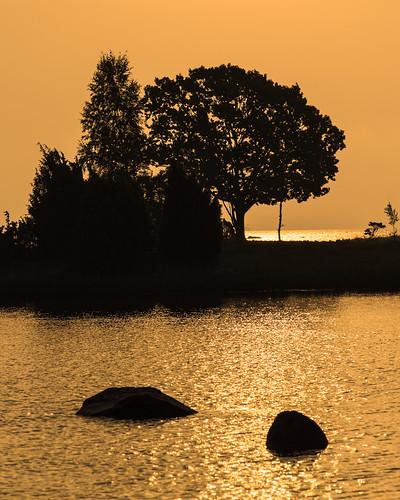 Morgonsolen skapar siluetter av träd och stenar