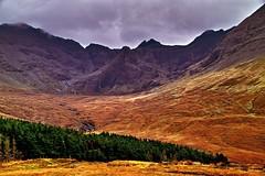 Skye Glen Brittle (Fr Paul Hackett) Tags: skye mountain hillside pines landscape cloudy