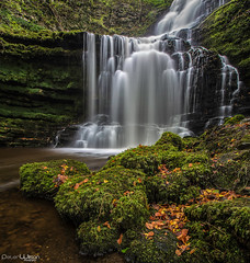 The Fall (peterwilson71) Tags: waterfall leaves rocks foliage water cascade yorkshire beautiful longexposure landscape canon6d droplets reflections flow grass leaf