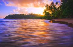Sunset (dkphotographs) Tags: srilanka beautiful blue coast landscape longexposure ocean red sea seaside seascape shore trees sun sunset sunlight sunsetoverthesea sundown water clouds evening sky south sonyalpha6000 unawatuna