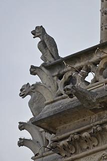2017.07.14.074 PARIS - Notre-Dame, les gargouilles