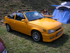 P6090097