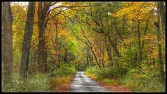 Road to Braley (cscott_va.) Tags: fall 2017 virginia highland county explore