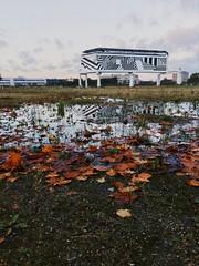 Perspective (erlingraahede) Tags: melancholic leaves vsco autumn art holstebro