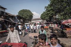 Mumbai - Bombay - Dharavi slum tour-37