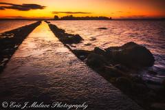 Island Hill Sunrise, Co. Down, Northern Ireland (ericjmalave) Tags: strangfordlough sunrise codown belfast lake calm landscape