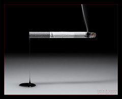 Effluence of Cancer (WibbleFishBanana) Tags: effluence smoke tar cigarette drip burn smolder death macromondays zodiac