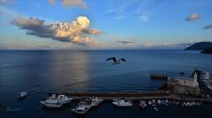 ... (♥danars♥) Tags: isoleeolie mare sicilia lipari tramonto cielo nuvole gabbiano chiesetta porto