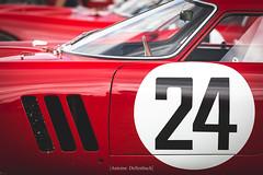 Ferrari 250 GTO (antoinedellenbach.com) Tags: worldcars classic car race racing circuit france motorsport canon endurance eos automotive classiccars automobiles vintage automobile racecar sport course historictrophy festival lightroom usm coche ferrari chantilly artelegance richardmille oise chateau castle concoursdelegance parade lemans 250gto gto interior