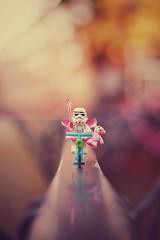 may the fairy be with you! (christian mu) Tags: lego legominifiguren minifigures minifiguren toys münster muenster germany sony bricks zeiss depthoffield sonya7ii distagon3514 35mm 3514 bokeh dof starwars stormtrooper fairy funny joke bike legostarwars kriegdersterne christianmu legominifigures