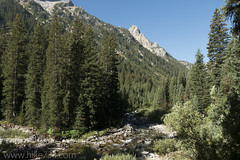 "Cascade Canyon • <a style=""font-size:0.8em;"" href=""http://www.flickr.com/photos/63501323@N07/37318859420/"" target=""_blank"">View on Flickr</a>"