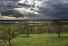 Streuobstwiesen im Herbstlicht (jmwill2005) Tags: herrenberg mönchberg gültstein gäu ammertal a81 nebringen streuobstwiese obstbäume herbst sturm wolken sonne sonnenstrahl hdr