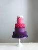 Ombre roses (Jen's Cakery) Tags: jens cakery jenscakery london cake wedding weddingcakes hampton court palace