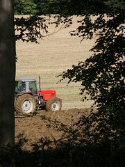 Tractor peep (Nekoglyph) Tags: guisborough forest walkway nature cleveland yorkshire green trees autumn plough furrows fields crop leaves red tractor farming trunk frame soil mud brown