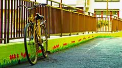 Bicycle (Matjaž Skrinar) Tags: 100v10f maribor 1025fav 250v10f