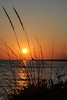 Dietro una duna - Behind a dune. (sinetempore) Tags: dietrounaduna behindadune sole sun luce light tramonto sunset torrelapillo torre tower salento puglia mare sea ionio erba grass controluce