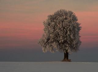 The winter soul...