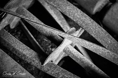 GETTING REEL (CharlesSmithPhotography) Tags: 500px old texture black white monochrome industry industrial close up machine rusted iron steel rusty metal blade rust rustic spiral nostalgia tools antique mower nostalgic weathered antiques blades tool reel
