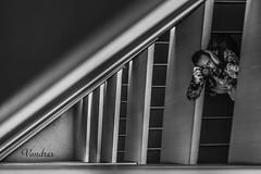 ZGZ201606_398R-BYN_FLK (Valentin Andres) Tags: bw blackwhite blancoynegro byn caixaforum españa spain stairs white zaragoza black blackandwhite escalera