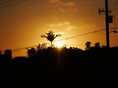 Don Henely: Sunset Grill (Tabo Kishimoto) Tags: donhenely honolulu song lyrics dmcg85 panasonic 1260mm