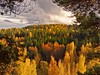 Autumn colours... (karpo65) Tags: autumn colours olympus ep3