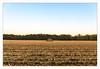 _____^_____ (fot_oKraM) Tags: stall schuppen shed field acker feld ernte harvest erntezeit mais corn vreden nrw
