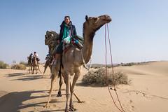 Rajasthan - Jaisalmer - Desert Safari with Camels-15