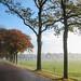 I'll run to Oudemolen